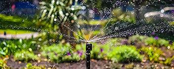 Irrigation Eugene