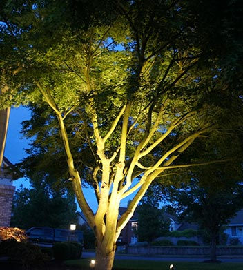 Eugene Landscape Lighting