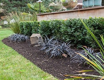 Landscaping Eugene Oregon