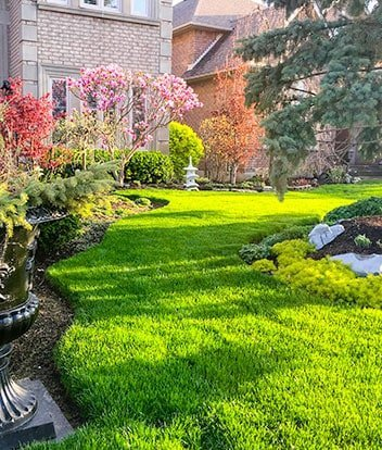 Lawn Drainage Solutions Eugene
